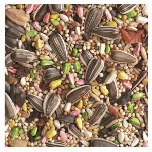 Brooks Acapulco Cockatiel Blend Bird Seed