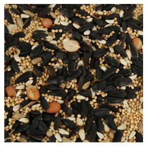 Brooks Birds of a Feather Songbird Seeds, Nuts and Fruits