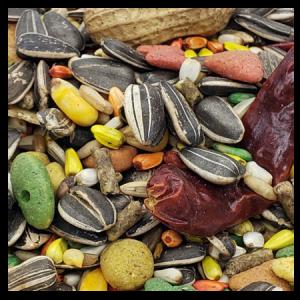 Brooks Grains Plus Deluxe Parrot Blend Bird Seed