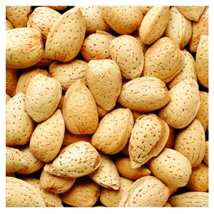 Brooks Orchard Fresh Almonds in Shell