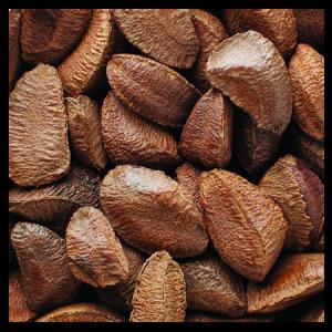 Brooks Orchard Fresh Brazil Nuts