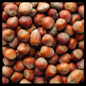 Brooks Orchard Fresh Filberts