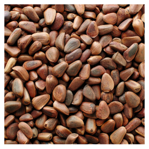 Brooks Orchard Fresh Pine Nuts