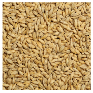 Brooks Raw Grains Barley