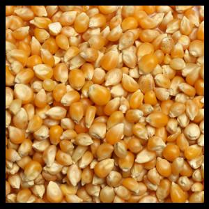 Brooks Raw Grains Popcorn
