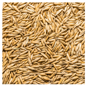 Brooks Raw Grains Whole Oats