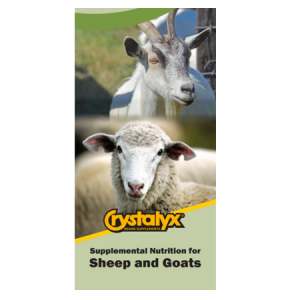 Lone Star Crystalyx Sheep and Goat